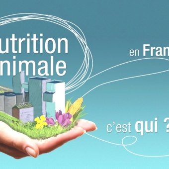 La Nutrition Animale en France