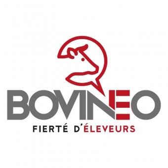 Bovineo