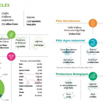 Chiffres clés 2015-2016
