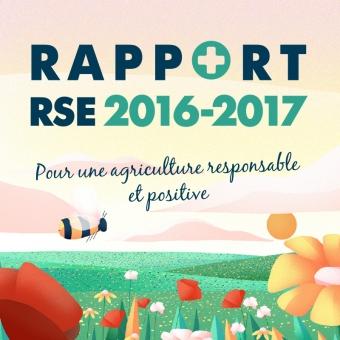 Rapport RSE Cavac 2016-2017