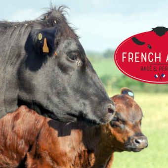 Une nouvelle filière bovine d'exception made in France !