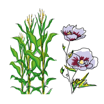 Approvisionnements agricoles : un bilan contrasté